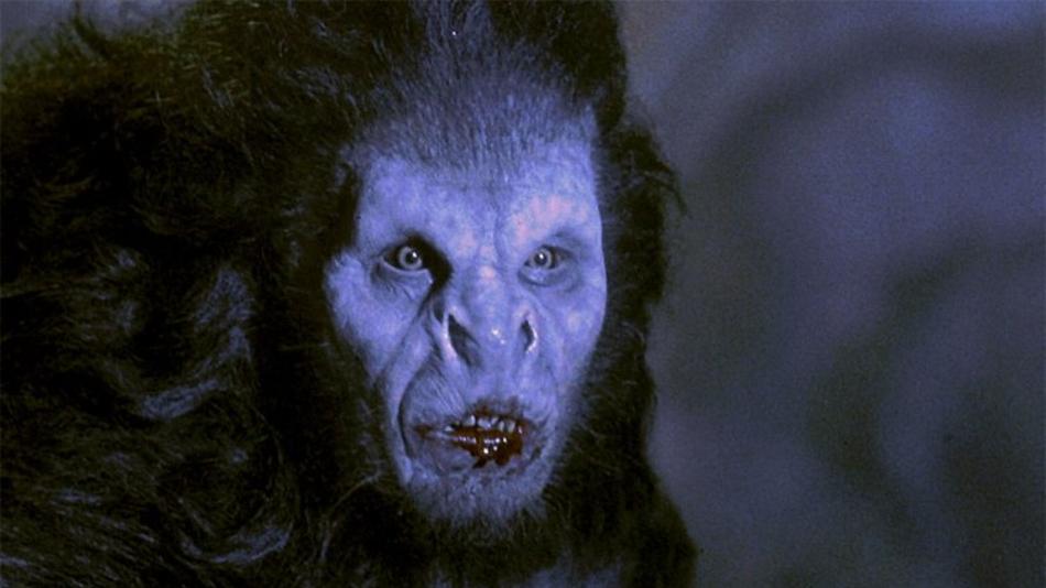 bram stokers dracula werewolf